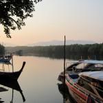 mangroven_atmo
