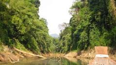 khao-sok-see-safari-1