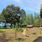 Koh Ra Beach Camp