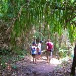 Koh Ra Dschungelwanderung