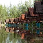 Prathong Oasis standard bungalows